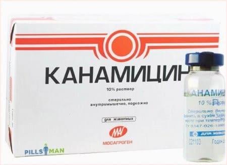 Хорошее лекарство от стоматита во рту
